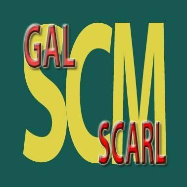 GAL SCM